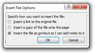 Insert Link, Insert a copy of the file onto the page, Insert the file as a printout so I can add notes to it